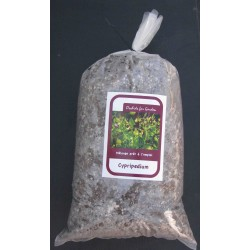 Soil for Cypripedium, ready-to-use mixture (5L Bag)